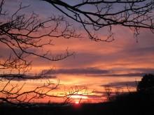Møn Abendsonne Ormebanke