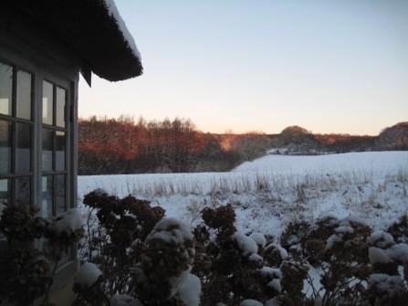 Møn Bakkegaard Gæstgiveri Waldblick im Winter