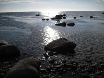 Møn Busene Have Strand 059
