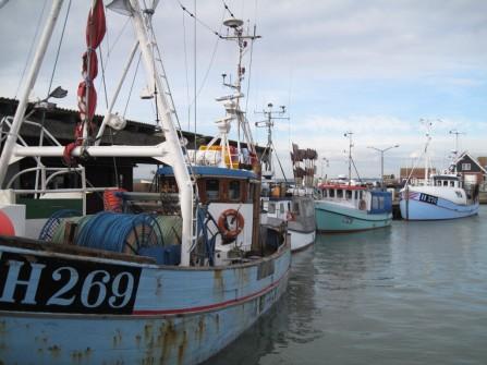 Møn Klintholm Havn 046
