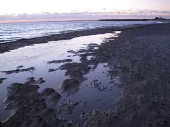 Møn Klintholm Havn Abendsonne 139