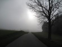 Møn Mandemarke im Nebel Herbst 2014 3