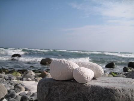 Møns Klint Kreidefelsen Strand von Møns Fyr Richtung Gråryg Fald 028