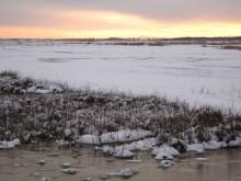 Nyord im Winter Blick auf Møn-Brücke 1