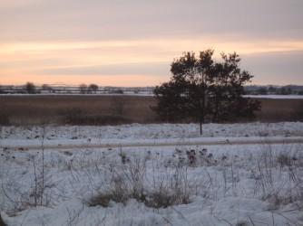Nyord im Winter Blick auf Møn-Brücke 2