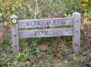 Gipfelsieg auf Møn, 135 Meter über dem Meeresspiegel