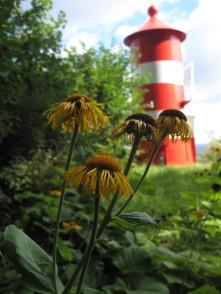 Møn Kliffwald Leuchtturm Liselund - Pomlerende 034