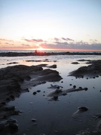 Møn Strand bei Klintholm Havn Abendsonne 060
