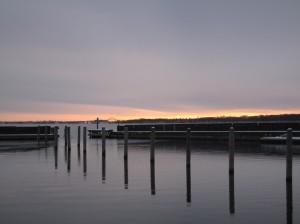 Møn Ulvshale und Nyord Winter 2015