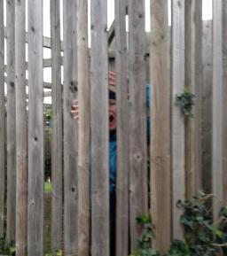 Lasst mich hier raus!!! (Foto: S. Hegnsvang)