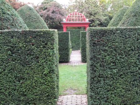 Neues erkunden ... hier im Botanischen Garten Vordingborg