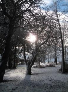 Møn Bakkegaard i sne 02