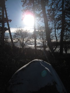 Møn Klinteskoven i sne 650