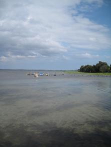 Camping Mønbroen Mole og strand 002