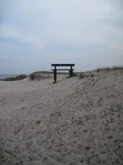 Faxe Ladeplads Strand 118