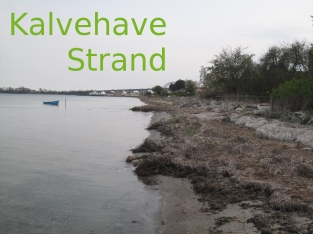 Kalvehave Strand 050