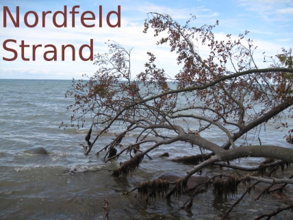 Nordfeld Strand 01 282