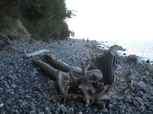 Pomlerende Strand 050