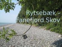 Rytsebæk Strand til Fanefjord Skov 01 041
