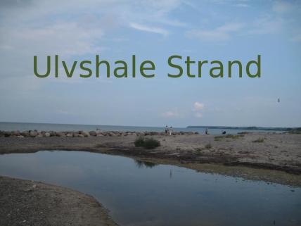 Ulvshale Strand 01 074