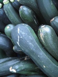 herbst-mon-ernte-zucchini