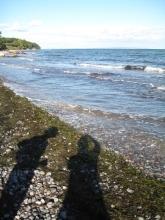 mon-strand-bei-fanefjord-mit-spaziergaengerschatten
