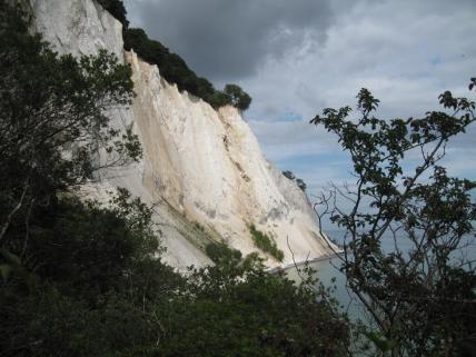 mons-klint-kreidefelsen-blick-von-der-treppe-zum-geocenter-richtung-dronningestolen-290