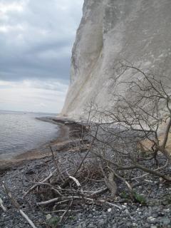 mons-klint-kreidefelsen-von-graryg-fald-zum-geocenter-01