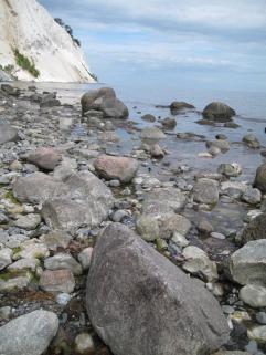 mons-klint-kreidefelsen-von-graryg-fald-zum-geocenter-257