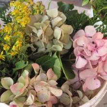 Hortensien und andere Herbstblumen