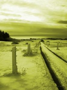 bakkegaard-mon-ostseeblick-winter-gelb