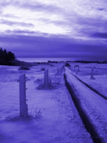 bakkegaard-mon-ostseeblick-winter-lila