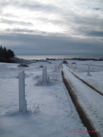 bakkegaard-mon-ostseeblick-winter-natur