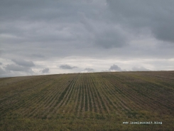 mon-herbst-winter-2016-17-kraneled-runde-043
