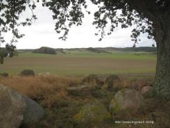 mon-herbst-winter-2016-17-kraneled-runde-048