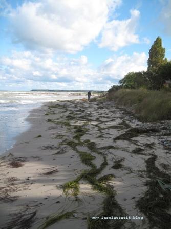 mon-herbst-winter-2016-17-strand-bei-ulvshale-154