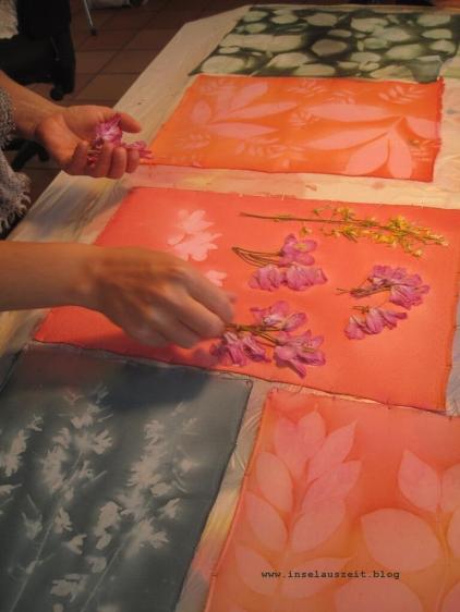 Sunprinting Pflanzendruck Emilielunden 069