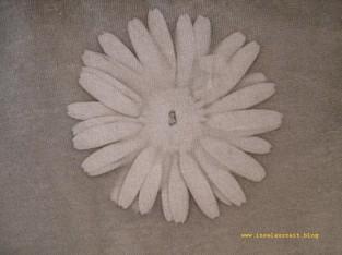 Sunprinting Pflanzendruck Emilielunden Margerite 273