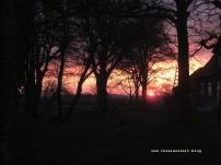 Møn Garten Sonnenuntergang 001