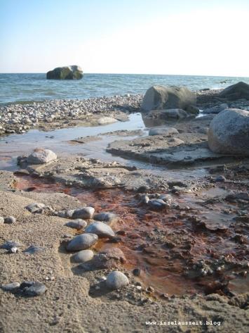 Møn Rytsebæk Strand Richtung Osten 072