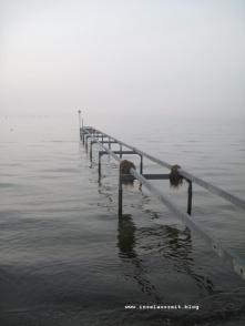 Strand Greve Sjælland 039