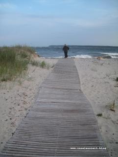 Camønoen Vindebæk Strandvej - Hårbølle Havn 091