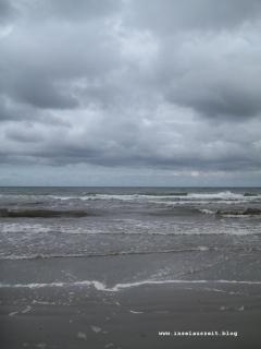 Møn Strand Klintholm Havn Richtung Westen 041
