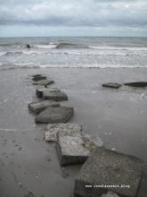 Møn Strand Klintholm Havn Richtung Westen 063
