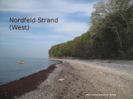 Nordfeld Strand mod vest Møn 028