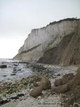 Kreidefelsen Møns Klint Strand und Abbruch nördlich vom Leuchtturm Møns Fyr 129