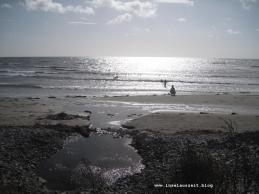 Mandemarke Have Strand Møn 063