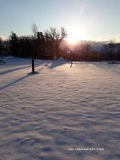 Winterbilder aus Dänemark Insel Møn Abendsonne über Schnee