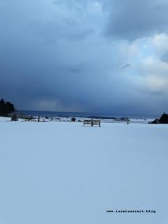 Winterbilder aus Dänemark Insel Møn Bank im Schnee mit Ausblick auf Ostsee