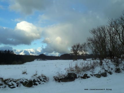 Winterbilder aus Dänemark Insel Møn Busene Blick auf Feld und Wald